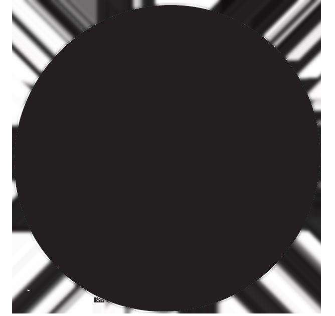 Schwarzer Punkt